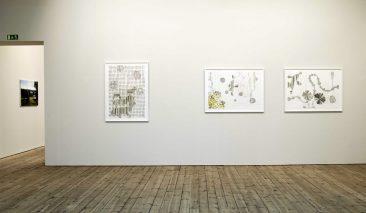 Teckningar, Susanna Nygren, Uppsala Konstmuseum, 2007